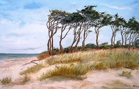 Bäume am Weststrand.