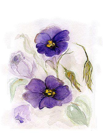 Blumengruss, gemalt, violett