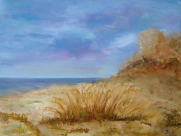 Strand mit Strandhafer.